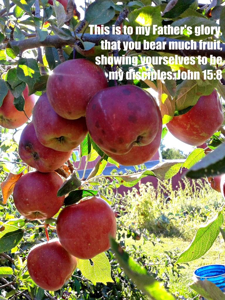 apple scripture